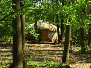 forestgarden_yurt